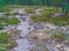 Bild: Tuula Heikkinen