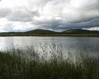 Ivalojoen suistoa. Kuva: Hanna Ylitalo