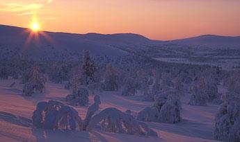 Kuva: Martti Rikkonen