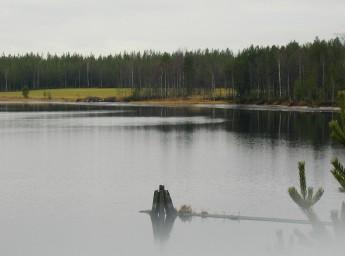 Uittoukko Kuva: Minna Oksanen