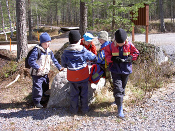 Bild: Tuula Heikkinen / Forststyrelsen