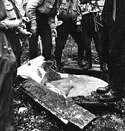 Liikasenvaaran kylästä eksynyt lehmä tuotti jännitystä Oulangalla vuonna 1954 partiopojille, jotka vetivät sen kaivosta Puikkokämpän seutuvilla. Kuva Juhani Kinnunen.