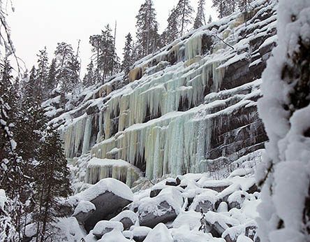 Sections of short frozen waterfalls on the cliff, trees are growing on top of the cliff. There are snow-covered stones at the foot of the cliff.