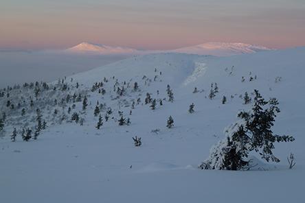 Apujoukkojenvaara forested hill and Joukhaispää fell in the middle of winter. Photo: Petteri Polojärvi