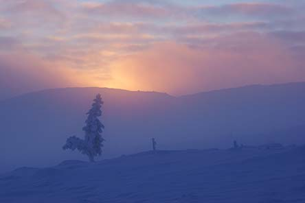 Winter day in Lupukkapää fell in the Urho Kekkonen national park. Photo: Petteri Polojärvi