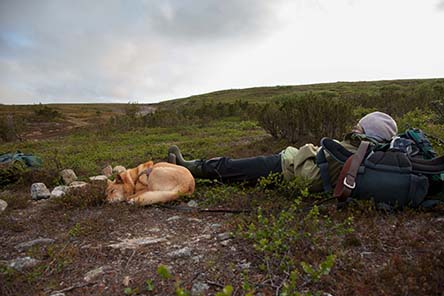 Break in the fell in the summer night. Photo: Tapio Tynys
