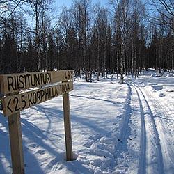 Riisin rykäsy. Bild: Posion matkailuyhdistys