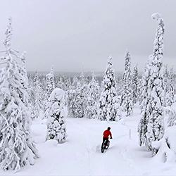 En terrängcyklist kör längs vinterleden med fatbike mitt i en snötäckt skog.