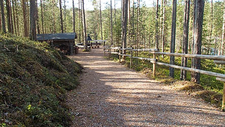 The Könkään kuohu Trail is accessible to all. Photo: Susanna Kolehmainen / Metsähallitus