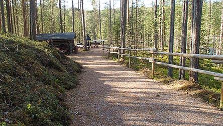 Könkään kuohu är en tillgänglighetsanpassad vandringsled. Bild: Susanna Kolehmainen/Forststyrelsen