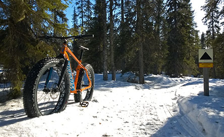 The Oulanka Wilderness Trail is suitable for fatbiking in winter. Photo © Harri Mourujärvi