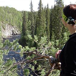 Kanjonin kurkkaus-leden. Bild: Minna Koramo/Forststyrelsen