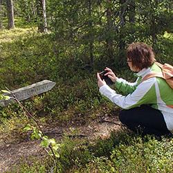 Rytisuo naturstig. Bild: Susanna Kolehmainen/Forststyrelsen