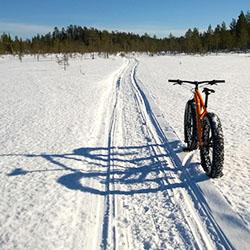 Oulanka Wilderness Trail is suitable on fatbikes on winter time. Photo: Harri Mourujärvi
