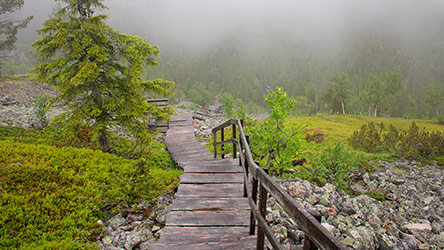 The stairs down from the summit of Ukko-Luosto fell. Image: Juha Paso