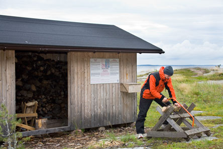 best service 3ebe7 c471b Polttopuun sahausta Mustaviirissä. Kuva  Markus Sirkka
