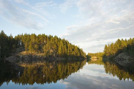 Joutenvesi sijaitsee Koloveden ja Linnansaaren kansallispuistojen välissä. Kuva: Tapio Tuomela