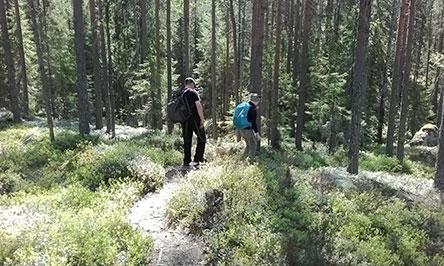 new arrival ebb93 8bade Nahkiassalon luontopolulla. Kuva  Anne Pyykönen