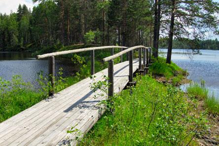 Kuva: Heikki Räsänen