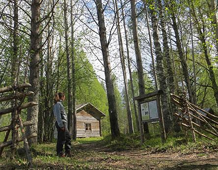 Poika-ahon torpalla. Kuva: Maija Mikkola