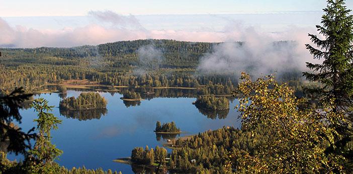 finland, nature, koli