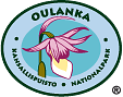The Emblem of Oulanka National Park - Calypso Orchid