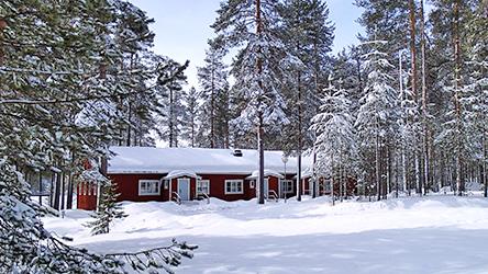 Фото: Taneli Kaakinen.