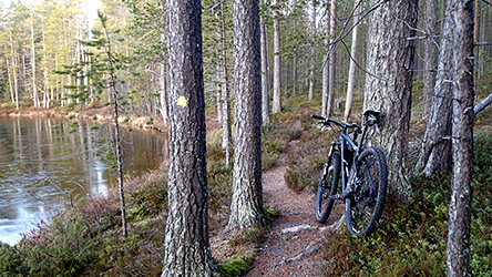 Biking Trails in Hossa - Nationalparks.fi 349cf5cbe6