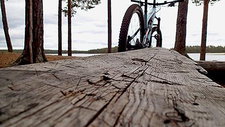 Крупный план простой деревянной скамейки. На заднем плане виден велосипед.