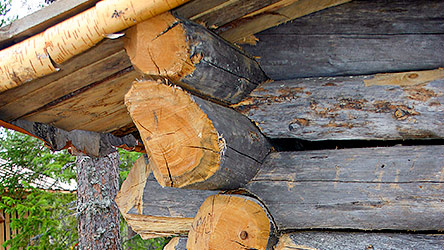 Niittypirtti daytrip huts traditional roof structures. Image: Juha Paso