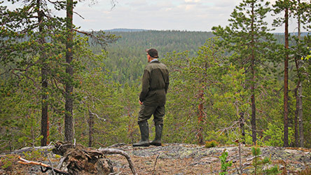 Admiring the scenery from Könkäänvaara hill. Image: Juha Paso