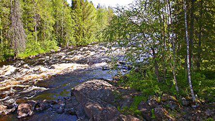 Vaattunkiköngäs rapids in the beginning of Vikajärvi Hiking Trail. Image: Juha Paso