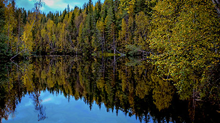 Autumn feelings on Vaattunkilampi pond. Image: Vesa-Matti Hillberg