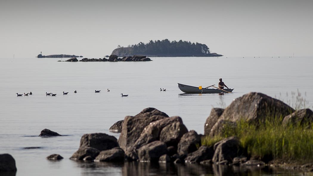 En fiskare sitter i en båt i soligt väder. Fåglar simmer i närheten av båten. Stora steniga holmar ligger i närheten.