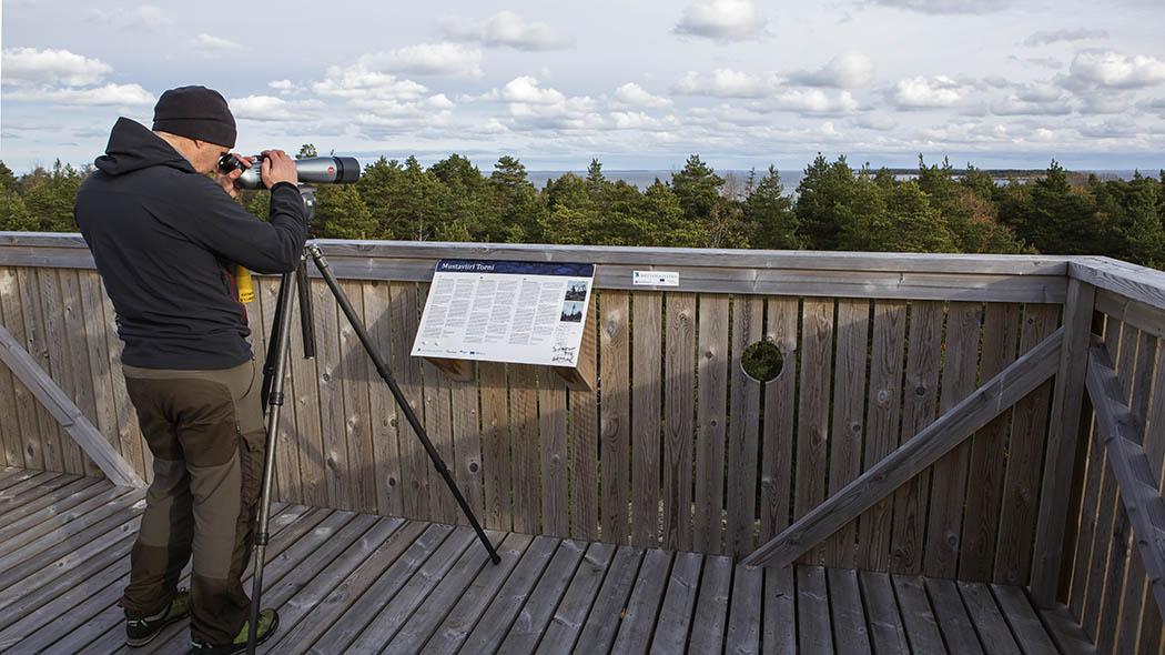 En man tittar ut över en skog med ett teleskop från ett naturtorn.