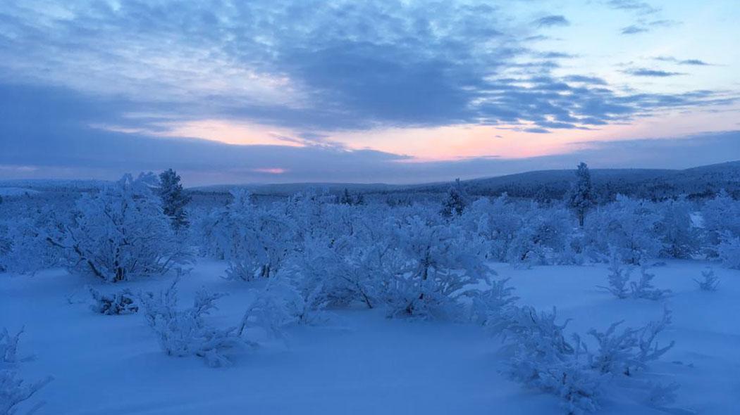 Ajankohtaista Lemmenjoella - Luontoon.fi da6dc50362
