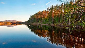 arrives 100% authentic best loved Lemmenjoen kansallispuisto - Luontoon.fi