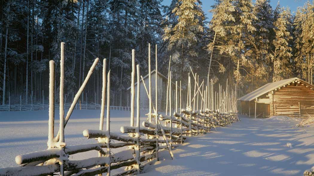 Lumi verhoaa Liesjärven maiseman. Kuva  Tapio Tuomela cfdbc0c089