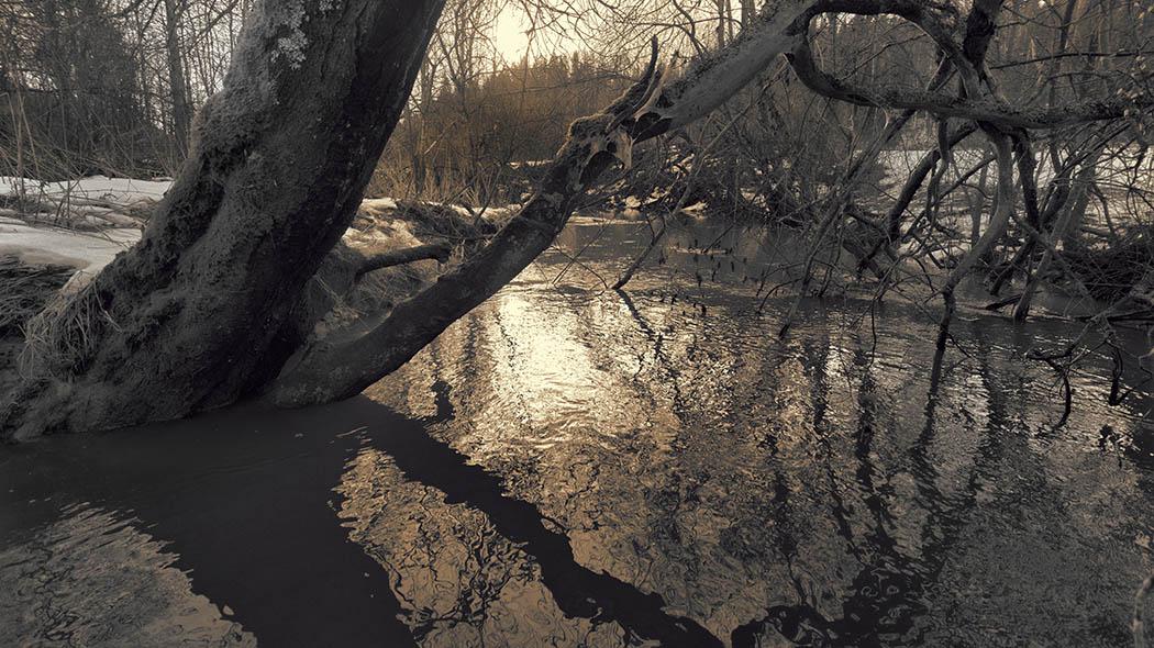 Kevättalvi Sipoonkorvessa. Kuva  Vastavalo Reijo Nenonen. 923db3f497