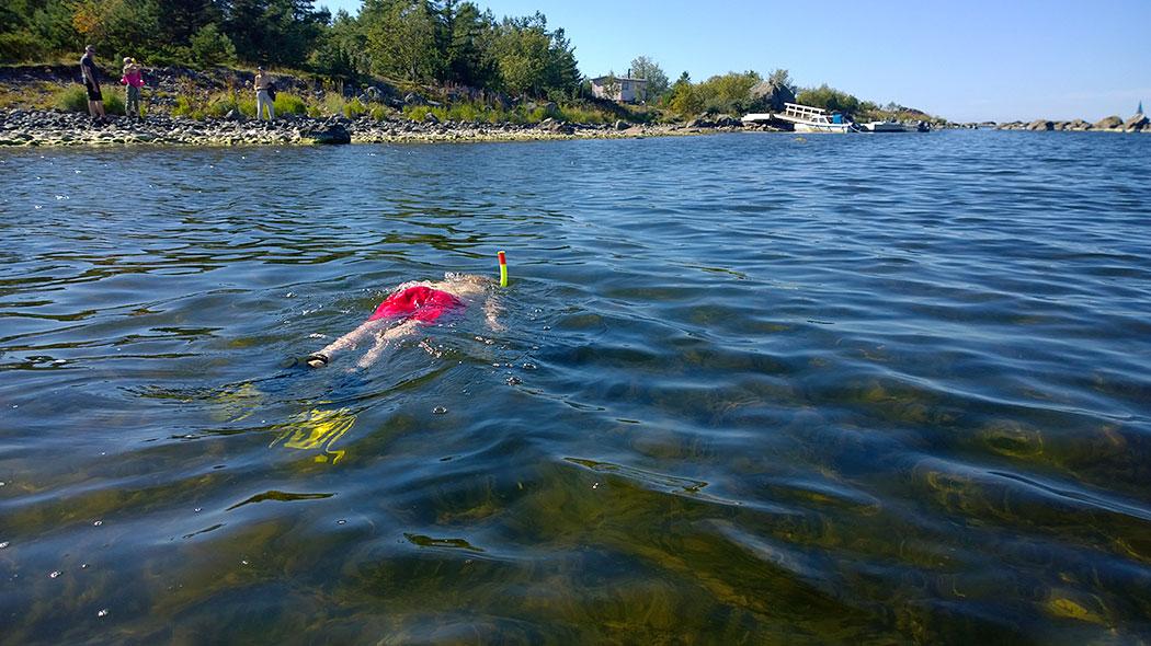 Ett barn snorklar i havet. I bakgrunden finns en stenig havsstrand, grönskande växtlighet och människor på stranden.