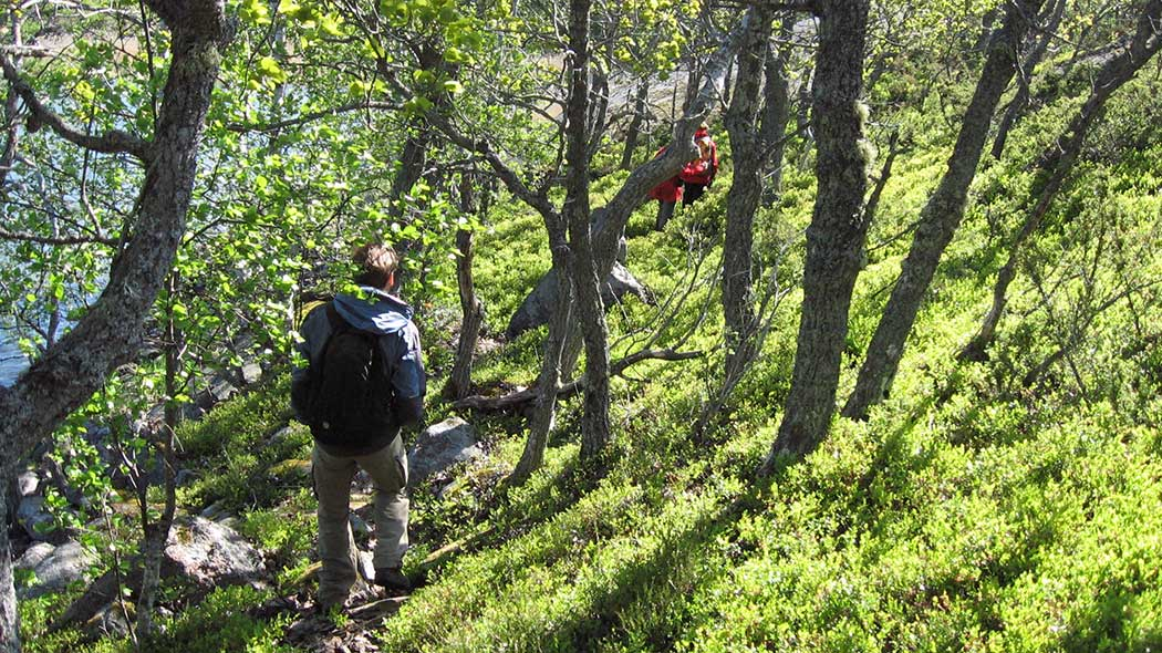 Hikers on Stora Hästö Island. Photo: Laura Lehtonen
