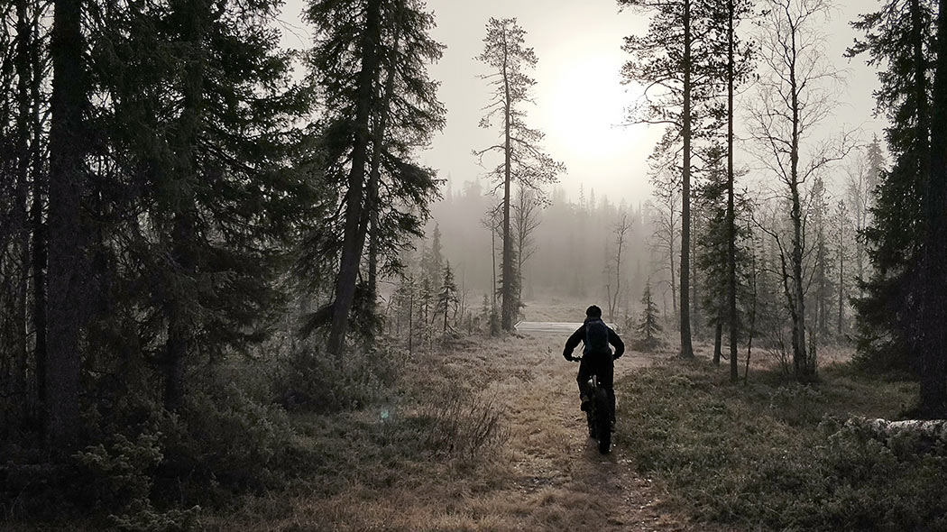 In a beautiful autumn fog near Pyhälampi dayt trip hut. Image: Kirmo Koistinen