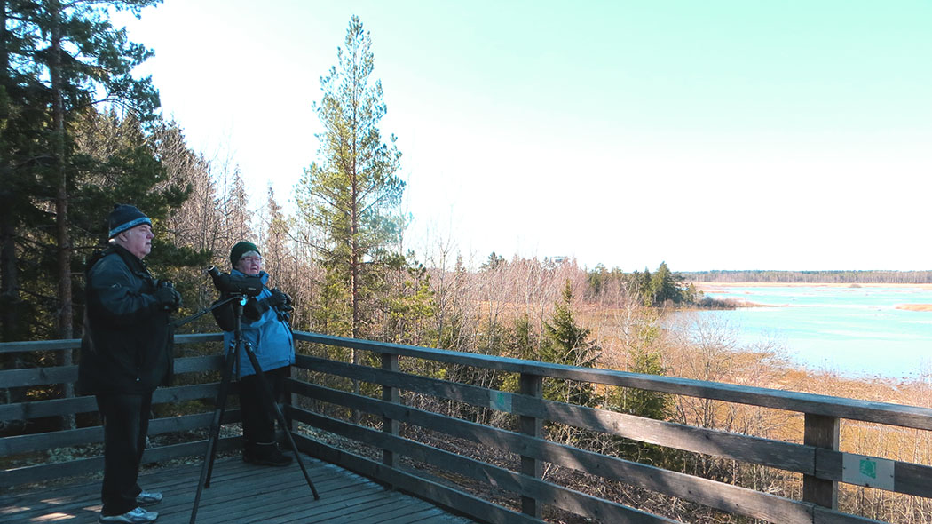 Två personer på utsiktplattformen i trä. De har med sig ett teleskop med stativ. Från plattformen öppnar sig ett vårlik vy mot sjön.