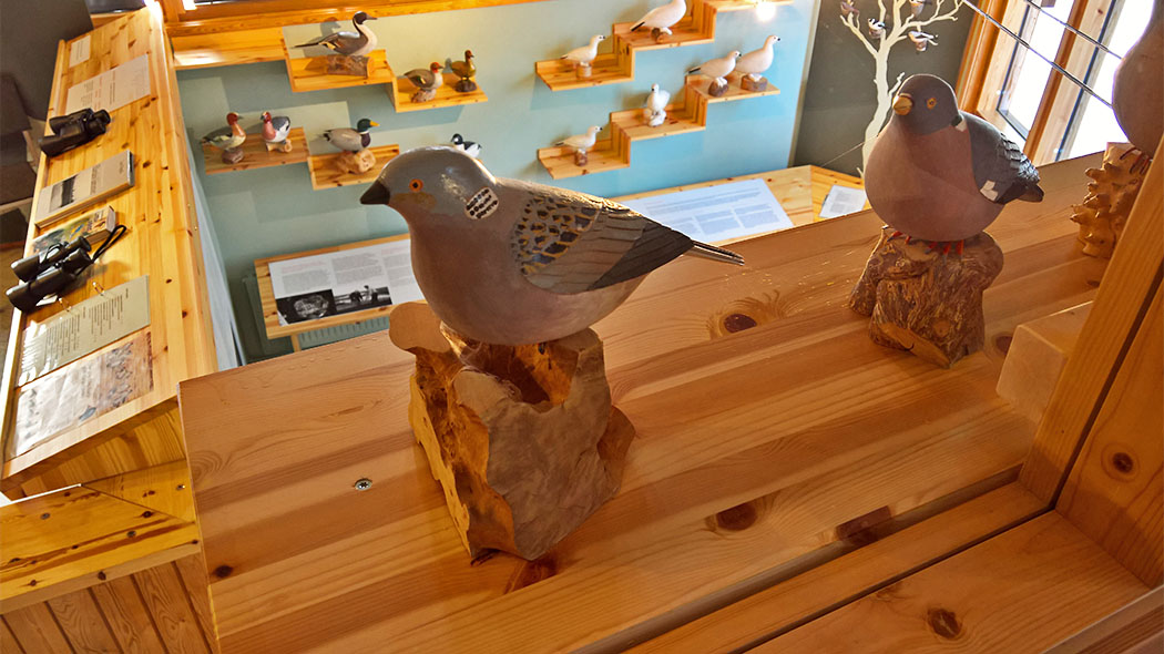 The wooden bird collection by Lauri Pappila, an outsider artist based in Enontekiö, is a permanent exhibition at the Fell Lapland Visitor Centre. Photo: Maarit Kyöstilä.