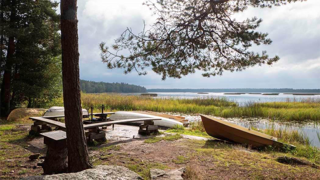 En sommarvy över eldplatsen vid stranden. Invid finns roddbåtar, både på stranden och i vassdungen.