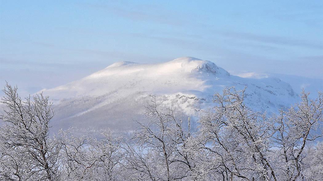 Mallan luonnonpuisto talvisessa auringonpaisteessa. Kuva  Tiia Lepistö 0841c44ec3