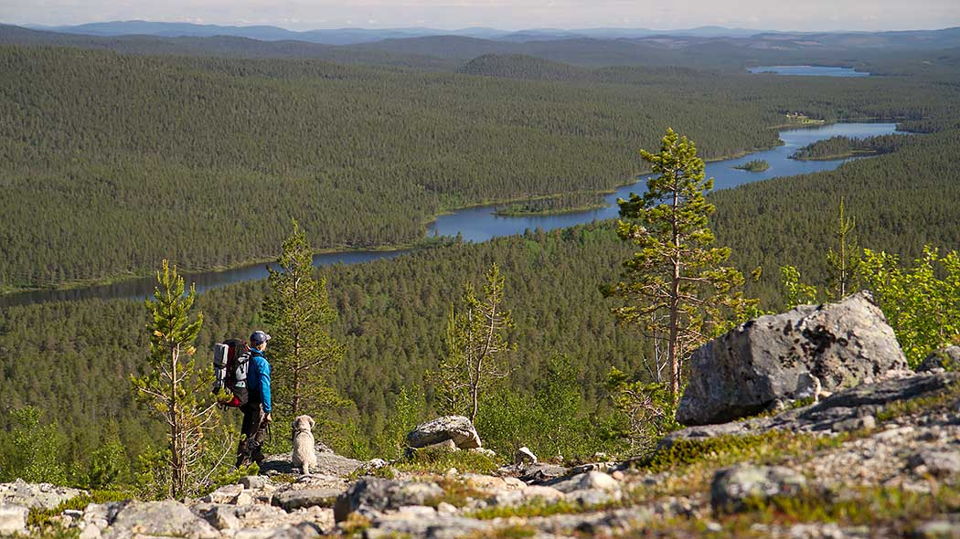 In the wildest parts of northern Finland hikers can wander for hours or even days without seeing another soul. Photo: Erkki Ollila
