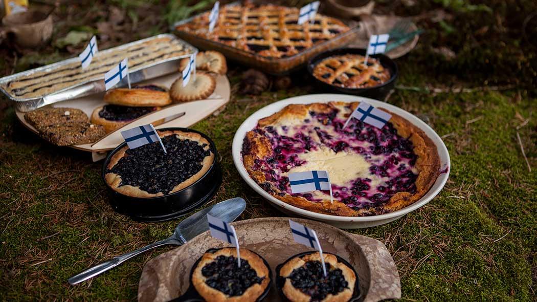 Suomen luonnon päivän leivos on mustikkapiirakka. Kuva: Joel Heino.