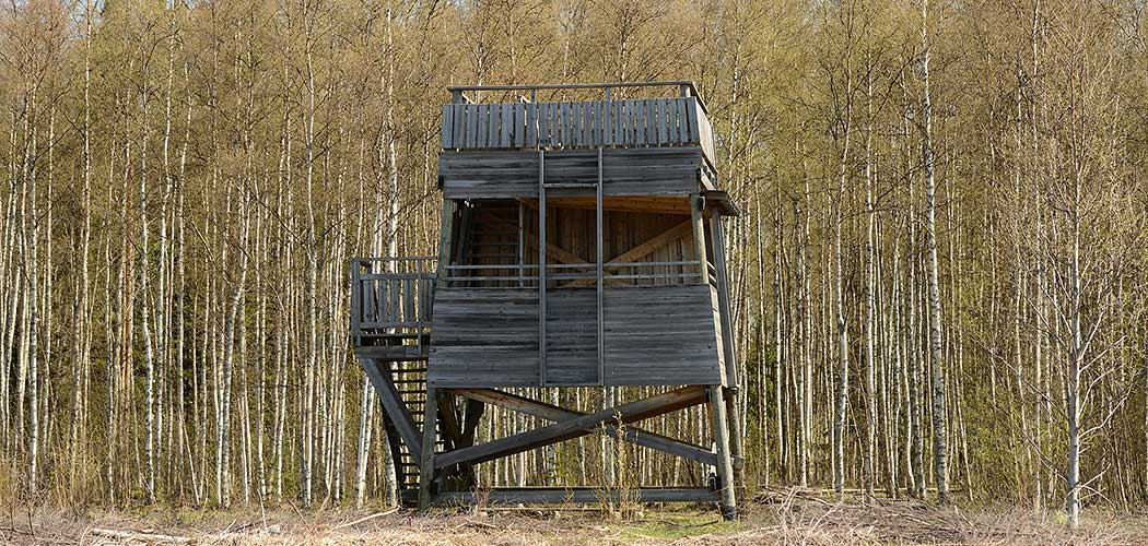 Papinkari Birdwatching Tower. Photo: Jari Peltomäki.