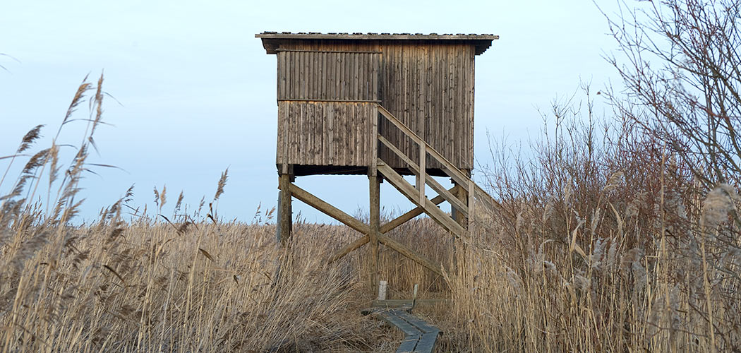 Puhkiavanperä Birdwatching Tower. Photo: Jari Peltomäki.
